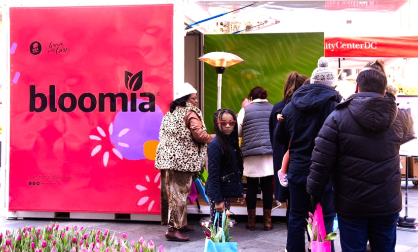 Bloomia Market: FlowerPop-Up